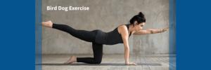 woman performing bird dog exercise