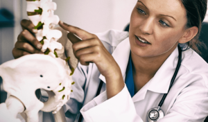 doctor pointing to model of healthy spine
