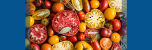 tomatoes are an excellent anti-inflammatory food